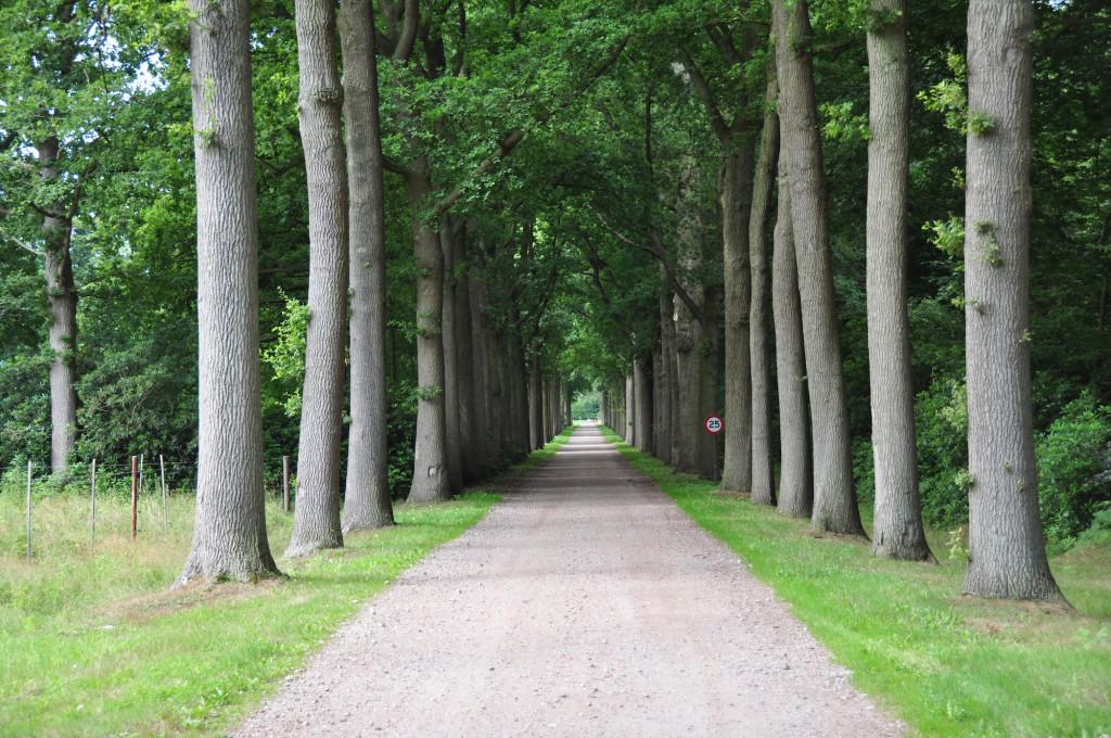 Landgoed Wouwse PlantageKL